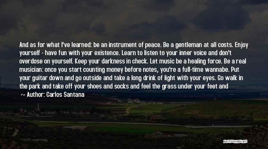 Don't Go Through Life Quotes By Carlos Santana