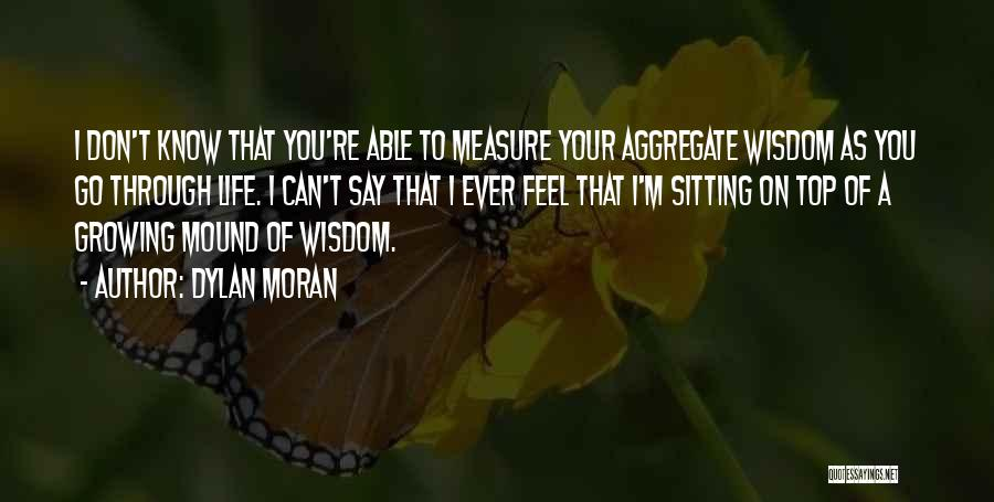 Don't Go Through Life Quotes By Dylan Moran