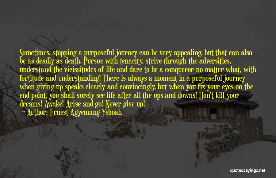 Don't Go Through Life Quotes By Ernest Agyemang Yeboah