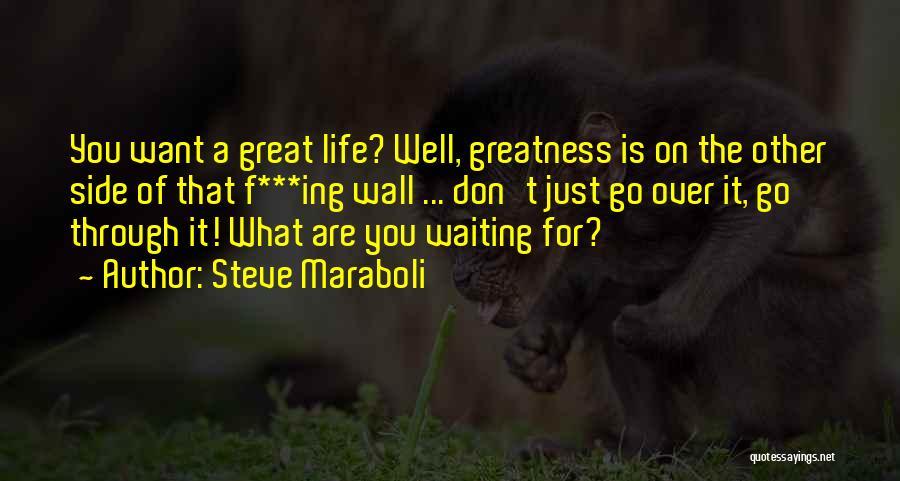Don't Go Through Life Quotes By Steve Maraboli