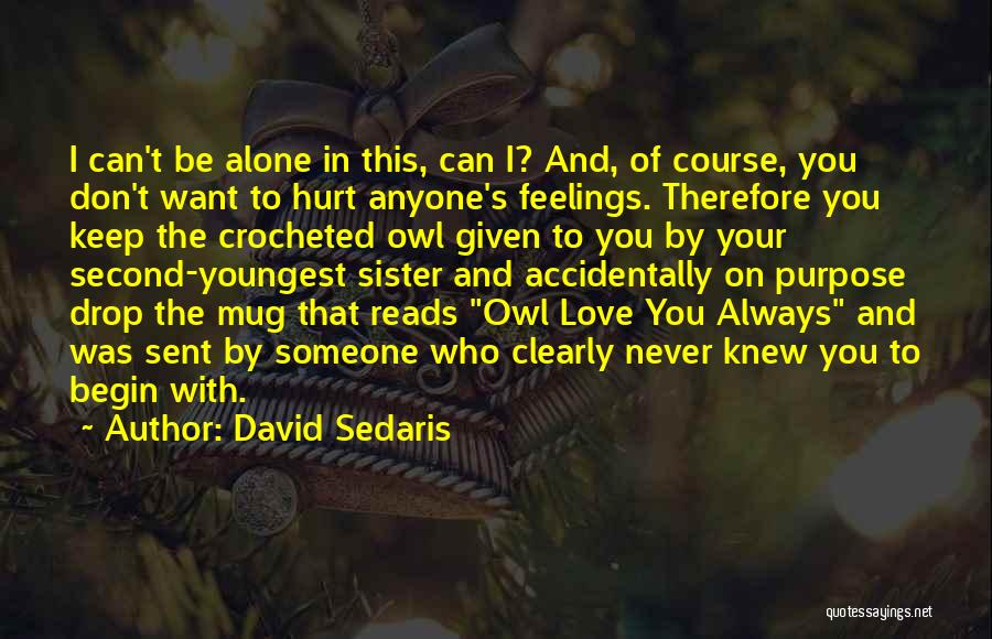 Don't Hurt Someone You Love Quotes By David Sedaris