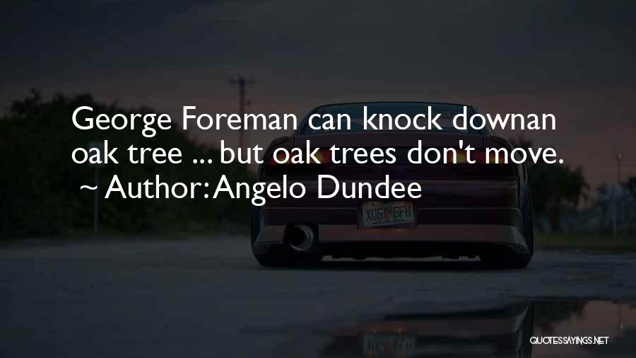 Don't Knock Me Down Quotes By Angelo Dundee