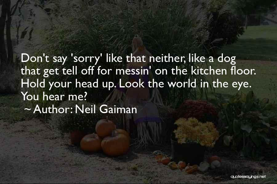 Don't Look Me In The Eye Quotes By Neil Gaiman