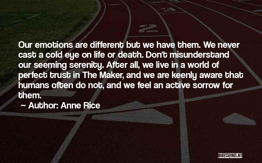 Don't Misunderstand Quotes By Anne Rice