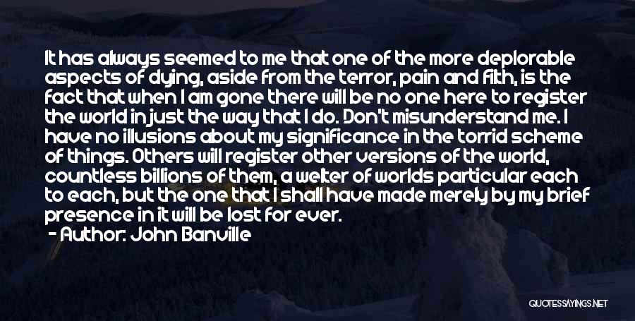 Don't Misunderstand Quotes By John Banville