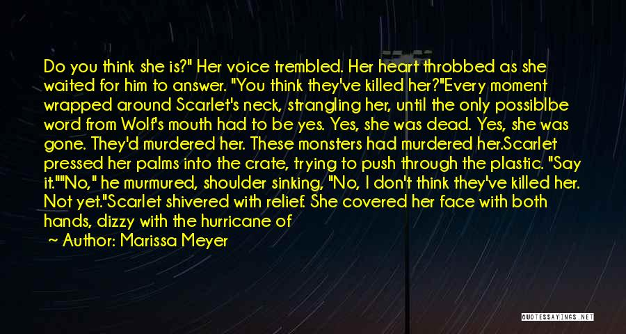 Don't Push Me Around Quotes By Marissa Meyer