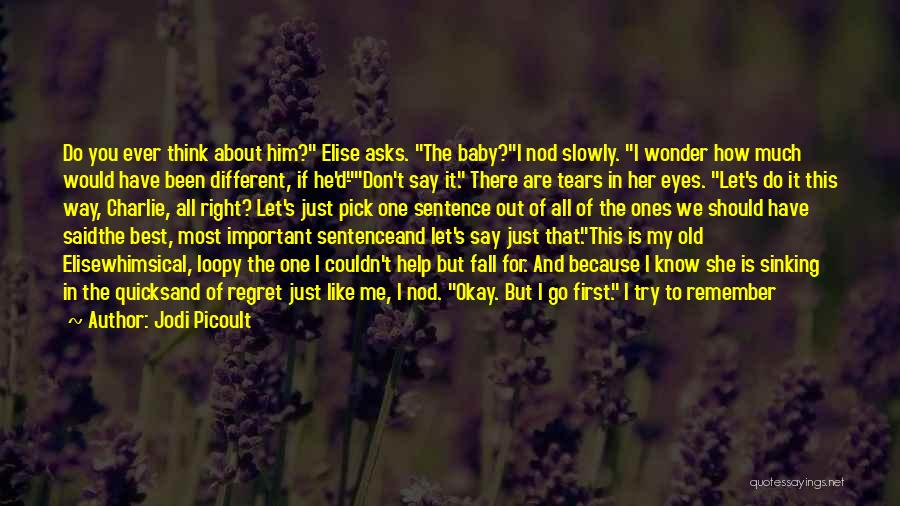 Don't Regret Quotes By Jodi Picoult