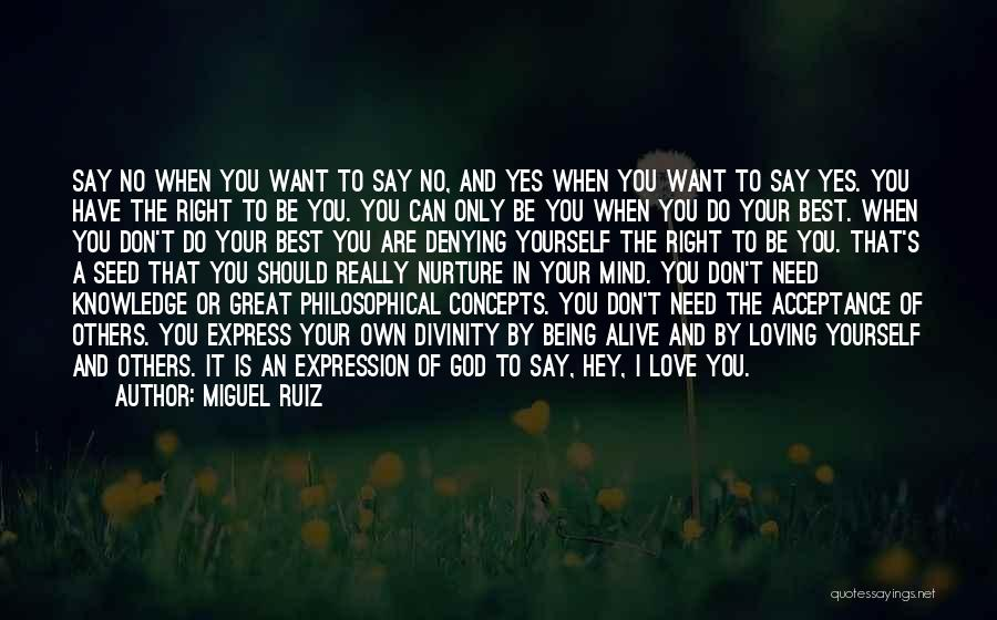 Don't Say I Love You Quotes By Miguel Ruiz