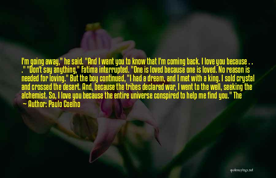 Don't Say I Love You Quotes By Paulo Coelho