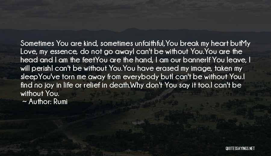 Don't Say You Love Me Quotes By Rumi