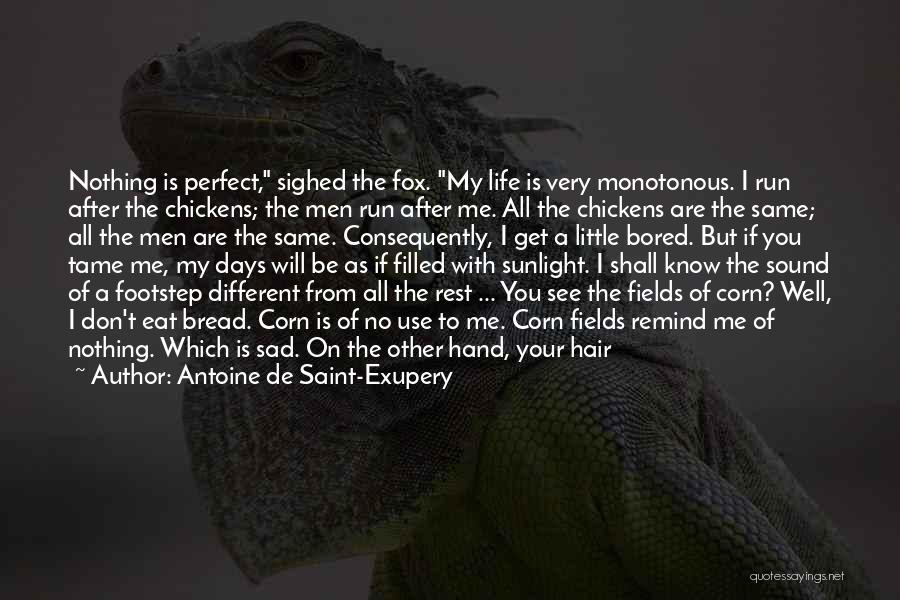 Don't Think You Are Perfect Quotes By Antoine De Saint-Exupery