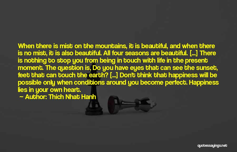 Don't Think You Are Perfect Quotes By Thich Nhat Hanh