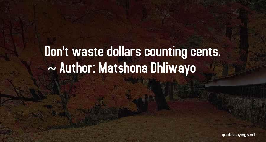 Don't Waste Your Words Quotes By Matshona Dhliwayo