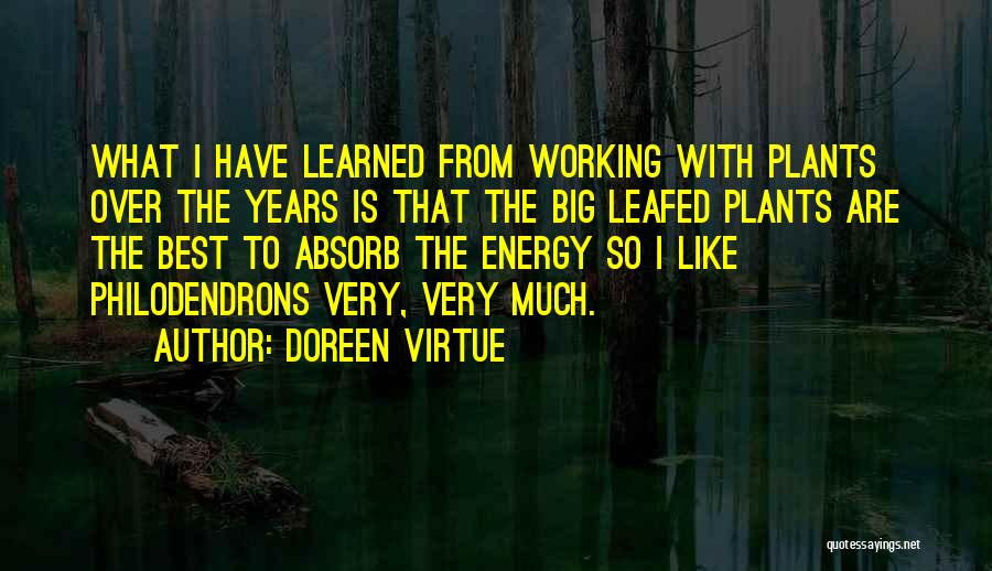 Doreen Virtue Quotes 1194750