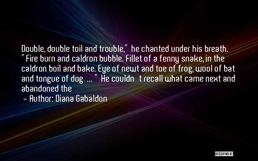 Double Double Toil And Trouble Quotes By Diana Gabaldon