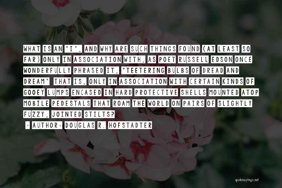 Douglas R. Hofstadter Quotes 116141
