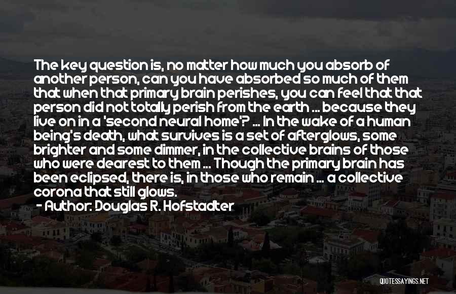 Douglas R. Hofstadter Quotes 1576759