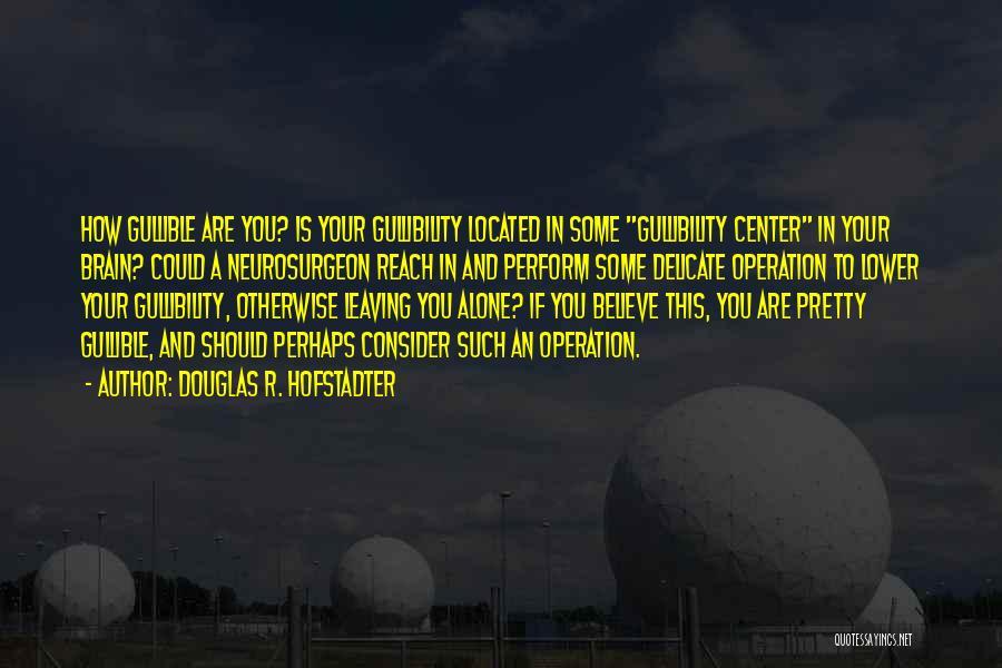 Douglas R. Hofstadter Quotes 2060696
