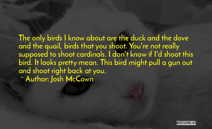 Dove Bird Quotes By Josh McCown