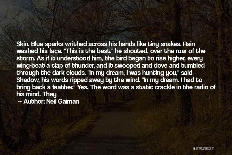 Dove Hunting Quotes By Neil Gaiman