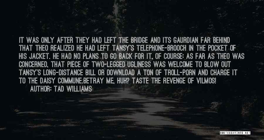 Download Quotes By Tad Williams