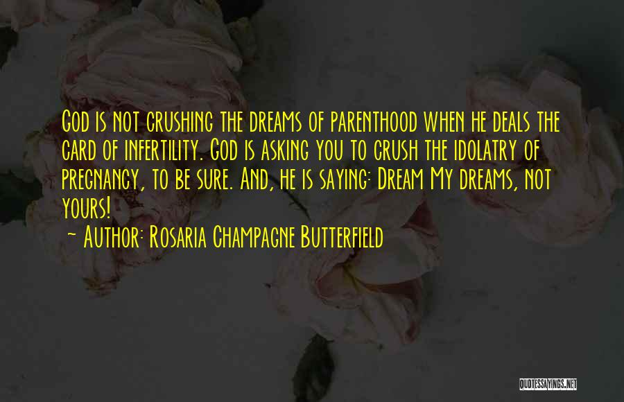 Dream Crushing Quotes By Rosaria Champagne Butterfield