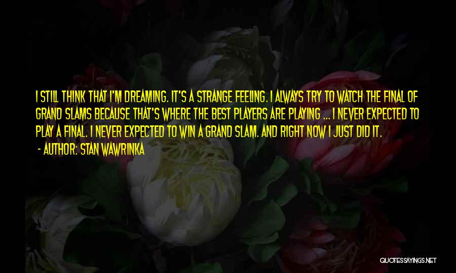 Dream Play Quotes By Stan Wawrinka