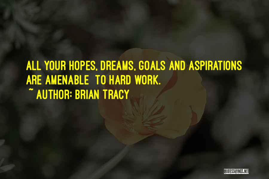 Dream Work Hard Quotes By Brian Tracy