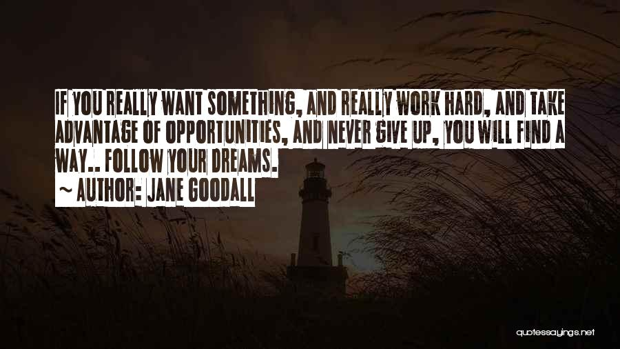 Dream Work Hard Quotes By Jane Goodall