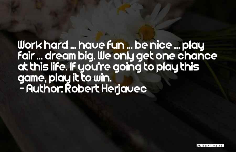 Dream Work Hard Quotes By Robert Herjavec