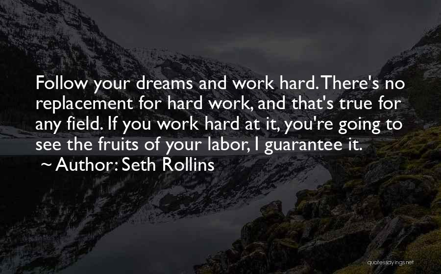 Dream Work Hard Quotes By Seth Rollins