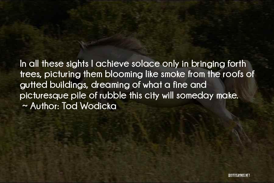 Dreaming Of Someone You Like Quotes By Tod Wodicka