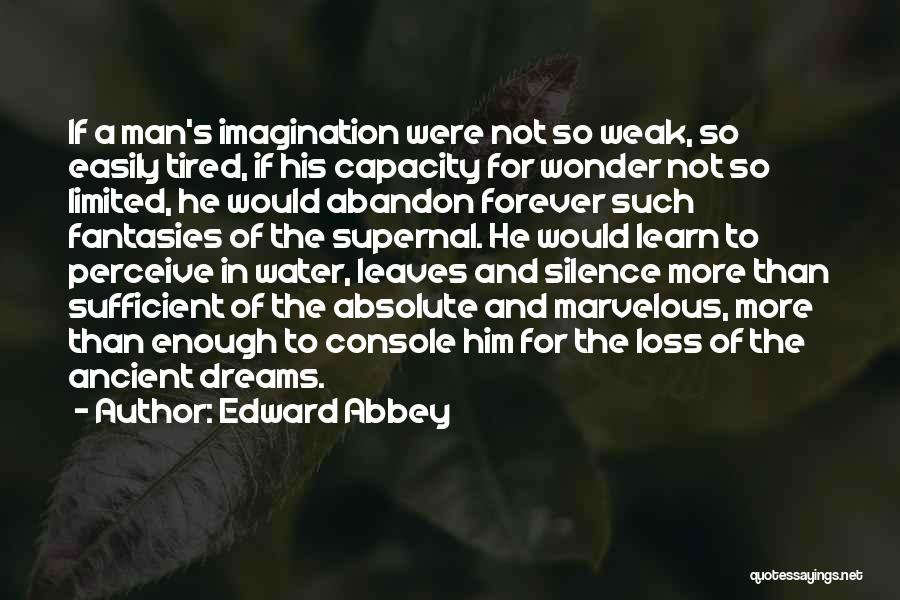 Dreams And Imagination Quotes By Edward Abbey