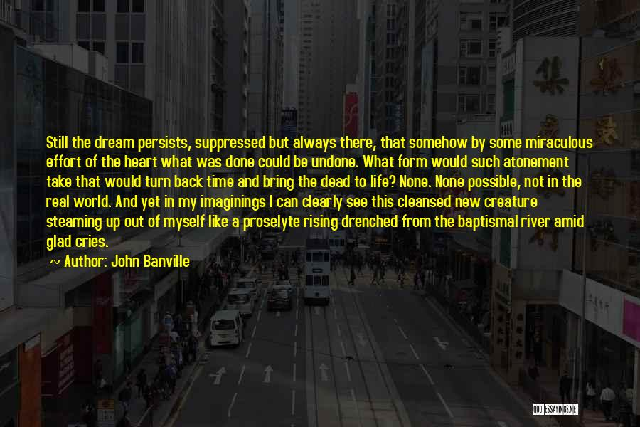 Dreams And Imagination Quotes By John Banville