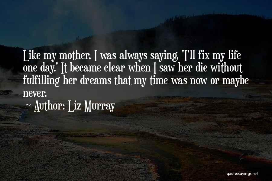 Dreams Fulfilling Quotes By Liz Murray