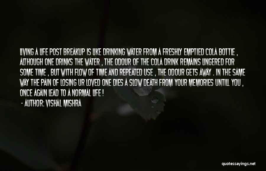 Drinking Pain Away Quotes By Vishal Mishra