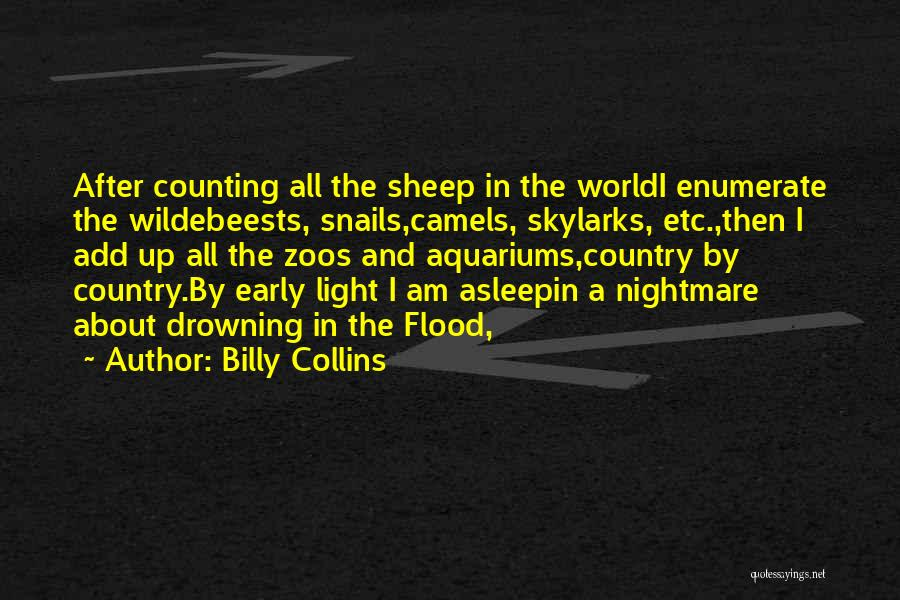 Drowning Out The World Quotes By Billy Collins