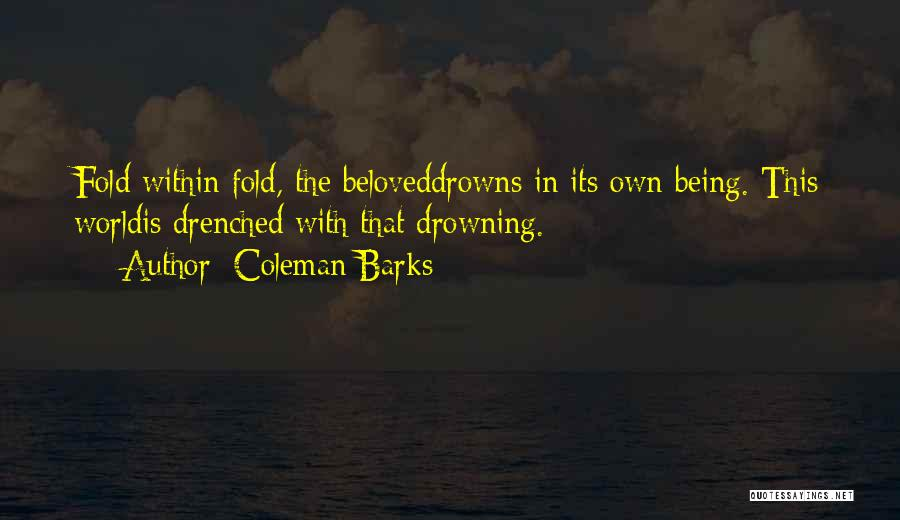 Drowning Out The World Quotes By Coleman Barks
