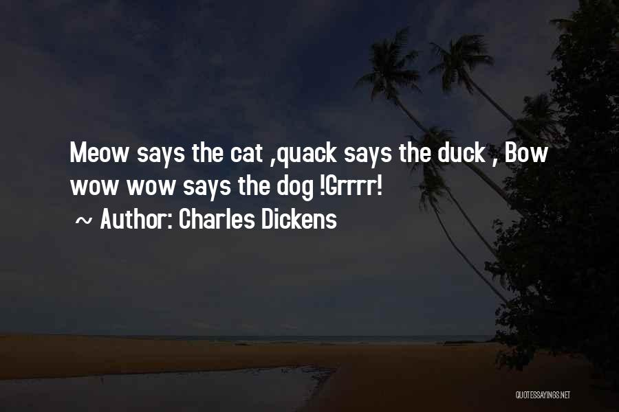 Duck Quack Quotes By Charles Dickens