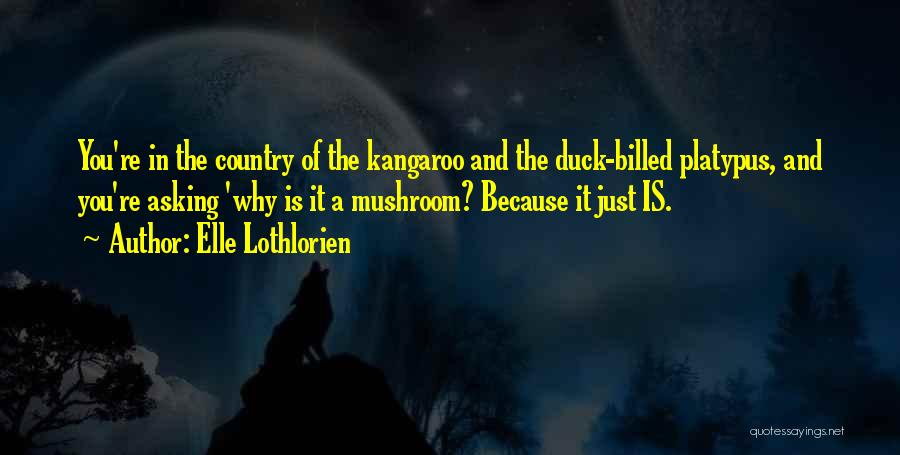 Duck Quotes By Elle Lothlorien