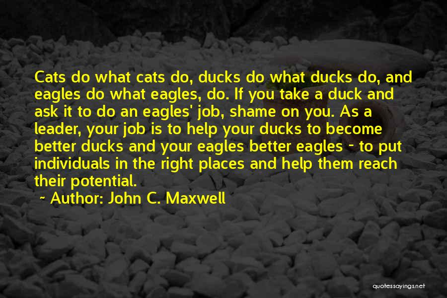 Duck Quotes By John C. Maxwell