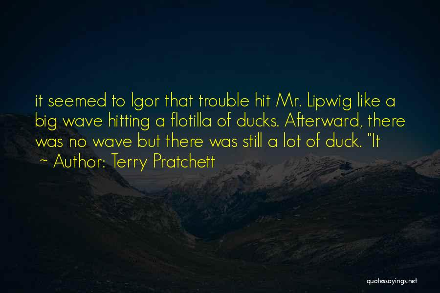 Duck Quotes By Terry Pratchett