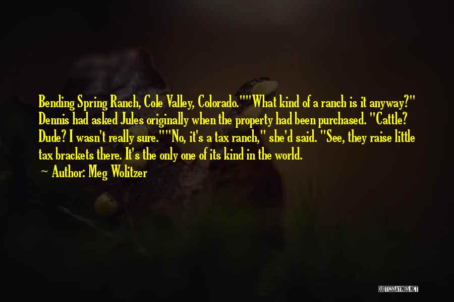 Dude Ranch Quotes By Meg Wolitzer