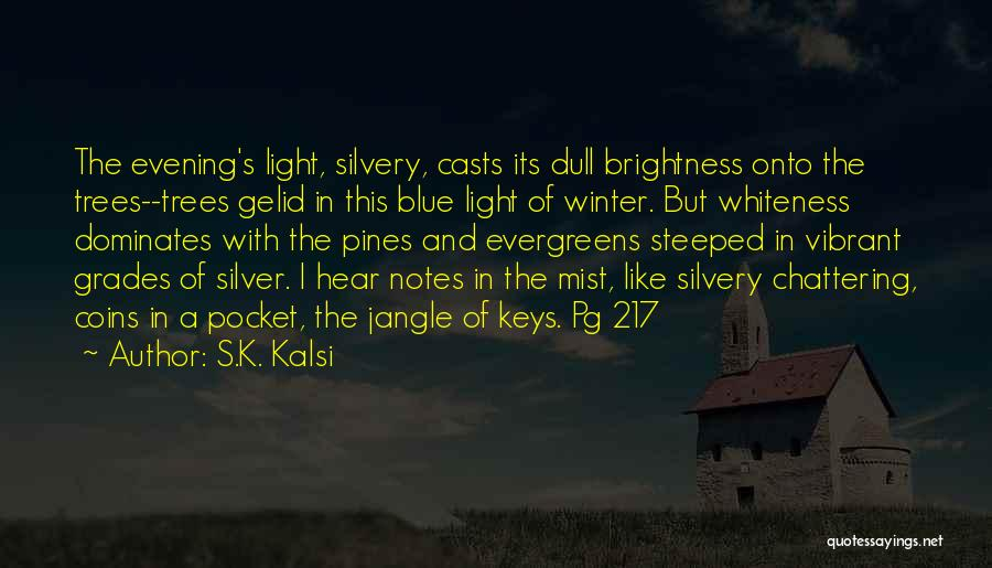 Dull Evening Quotes By S.K. Kalsi