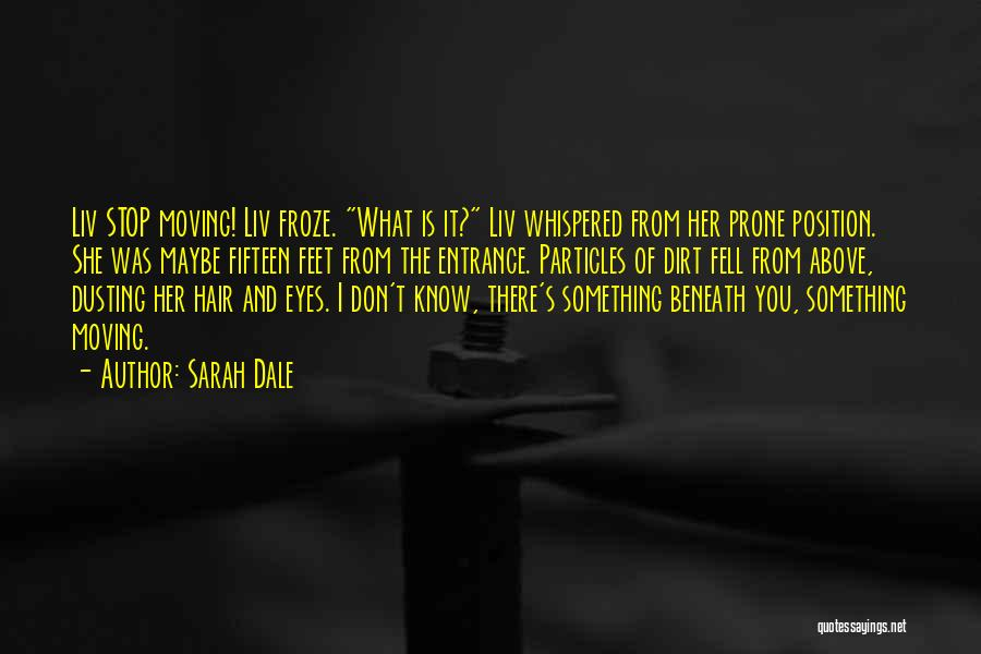 Dusting Off Quotes By Sarah Dale