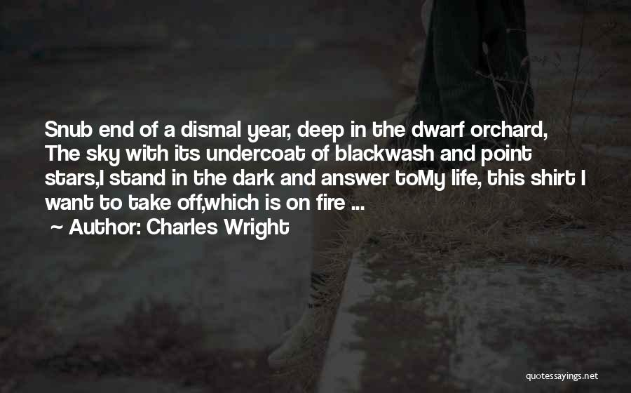 Dwarf Quotes By Charles Wright