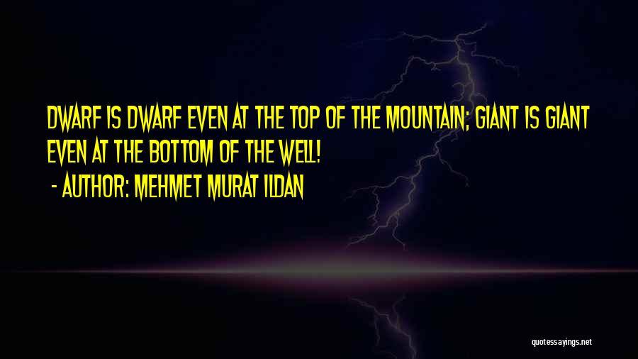 Dwarf Quotes By Mehmet Murat Ildan