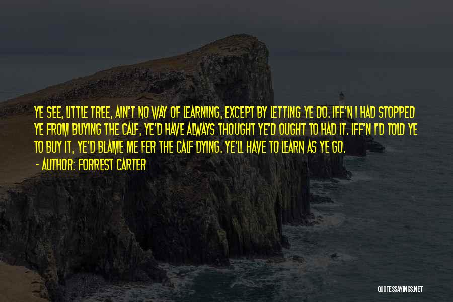 Dying And Letting Go Quotes By Forrest Carter