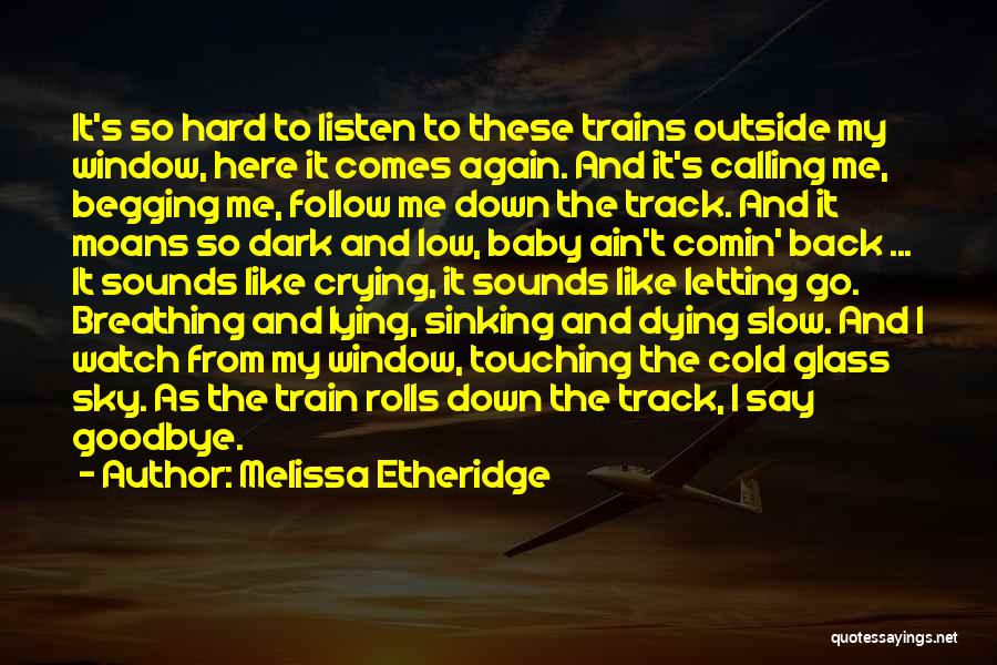 Dying And Letting Go Quotes By Melissa Etheridge