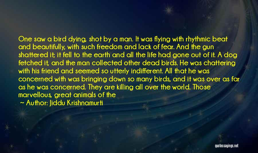 Dying For A Friend Quotes By Jiddu Krishnamurti